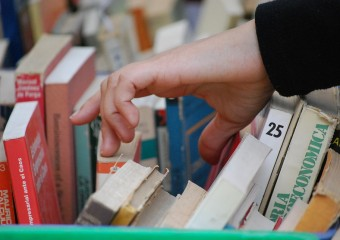 Culture Hands Literature Books Reading