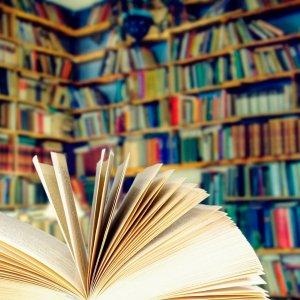 librairie-03